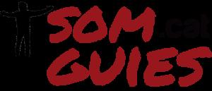 Logo Somguies